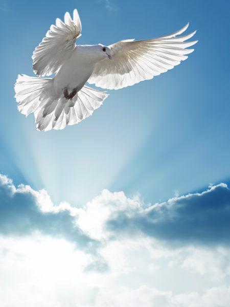 Szellemi ajándékok, kenet